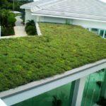 Telhado verde – como fazer, dicas, passo a passo